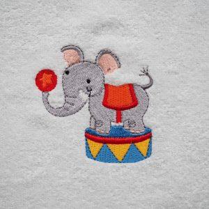 circus olifant - Cezar